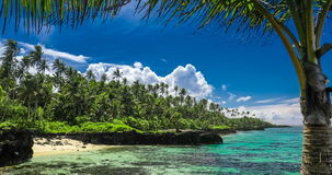 Tropical beach on Samoa Island with palm trees stock video footage