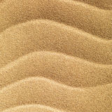 Tropical beach sand stock photography