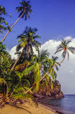 Tropical beach with sand Stock Photography