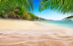 Tropical beach with sand, summer holiday background. Travel and beach vacation, free space for text or product placement royalty free stock image