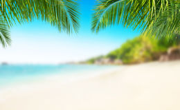 Tropical beach with sand, summer holiday background. Stock Image