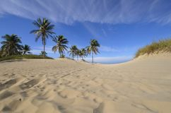 Tropical beach at Santa maria del mar, cuba Stock Images