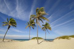 Tropical beach at Santa maria del mar, cuba Royalty Free Stock Photography