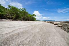 Tropical beach at santa teresa costa rica. Tropical beach and forest at santa teresa costa rica Stock Images