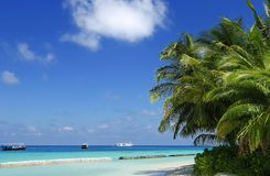 Tropical beach scene Stock Photos