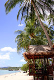Tropical Beach Scene. Tropical beach with palm trees and thatched beach hut Royalty Free Stock Photos