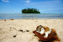 Tropical beach scene. Tropical beach scene, broken coconut lies on beach leading from beach to a green island Stock Image