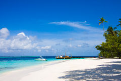 Tropical beach scene. Maldives on a tropical beach scene Royalty Free Stock Image