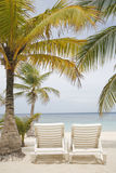 Tropical Beach Scene. Really nice tropical beach with empty loungers Stock Photos