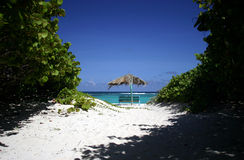 Tropical beach scene. Tropical beach and vegetation on Anagonda island, British Virgin Islands Royalty Free Stock Image