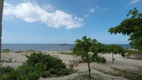 Tropical beach scene stock video footage