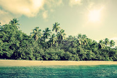 Tropical beach scenery with palm trees Royalty Free Stock Photo