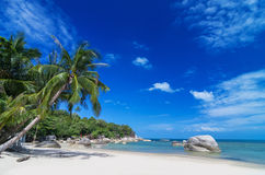Tropical beach with sea on the sand and palm trees, sa-mui islan Stock Images