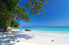 Tropical beach with sea on the sand and trees, ta-chai island so Royalty Free Stock Photo