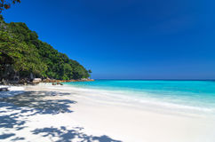 Tropical beach with sea on the sand and trees, ta-chai island so Stock Photo