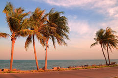 Tropical beach and sea Royalty Free Stock Photography