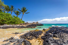 Tropical Beach. At Secret cove on the island of maui, Hawaii Stock Images