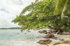 Tropical beach at Seychelles - nature background. Anse Lazio beach, Praslin Island, Seychelles. Cloudy day Royalty Free Stock Photo
