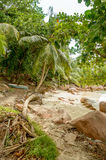 Tropical beach at Seychelles - nature background. Anse Lazio beach, Praslin Island, Seychelles. Cloudy day Royalty Free Stock Image