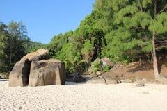 Tropical beach. Beach on Seychelles with palms, rocks, sand. Big rock on the beach Stock Photography