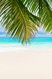 Tropical beach. The Seychelles Royalty Free Stock Photography