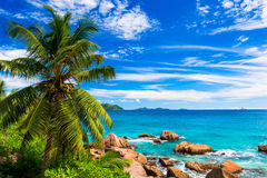 Tropical beach. The Seychelles. Photo of a tropical beach. The Seychelles Stock Photo