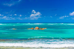 Tropical beach. The Seychelles Stock Images