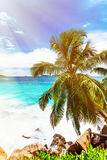 Tropical beach. The Seychelles. Toned image Stock Photo
