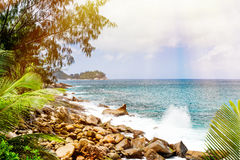 Tropical beach. The Seychelles. Toned image Stock Photography