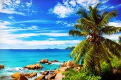 Tropical beach. The Seychelles Royalty Free Stock Photos