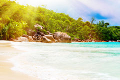 Tropical beach. The Seychelles. Toned image Royalty Free Stock Photos