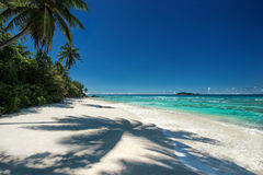 Tropical beach with a shadow of the coconut palm tree. Outdoors photography of picturesque Seychelle islands Royalty Free Stock Image