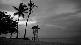 A tropical beach with lifeguard house and coconut trees stock photos