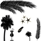 Tropical beach silhouettes. Silhouettes of palm stems, palm tree, cocktail glass, starfish, flip-flop Royalty Free Stock Photos