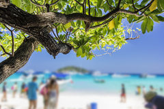 Tropical beach, Similan Islands, Andaman Sea, Thailand Royalty Free Stock Image