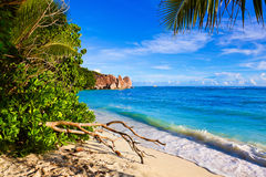Tropical beach Source D'Argent at Seychelles Stock Photo