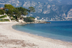 Tropical beach in south of france. Tropical beach with palm trees in south of france Stock Photos