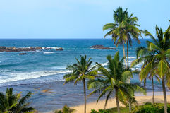 Tropical beach. In Sri Lanka Royalty Free Stock Photography