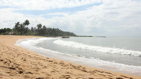 Tropical beach, Sri Lanka. Tropical beach in Sri Lanka stock video