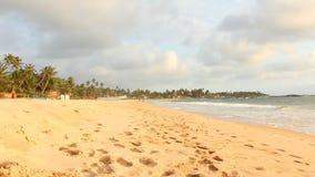 Tropical Beach. Tropical Beach in Sri Lanka stock footage