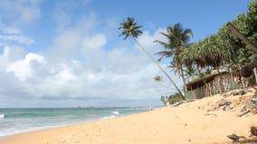 Tropical Beach,Sri Lanka. Tropical Beach in Sri Lanka stock footage