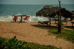 Tropical beach in Sri Lanka. Royalty Free Stock Image