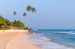 Tropical beach in Sri Lanka at sunset Stock Photography