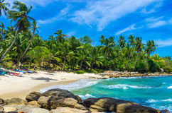 Tropical beach in Sri Lanka Stock Photography