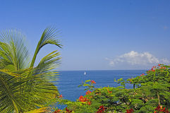 Tropical Beach-St. Lucia In Summer Royalty Free Stock Photos