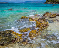 The Tropical Beach Stock Photo