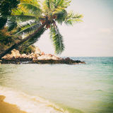 Tropical beach in summe. R - nature background. Vintage and grunge filter effect Stock Images