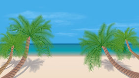 Tropical beach. Summer day. Sky is blue. Vector. Stock Image