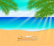 Tropical beach summer with with Palm Trees Royalty Free Stock Photo
