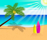 Tropical beach summer with with Palm Trees Stock Images